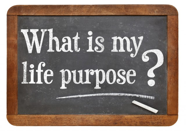 whats your purpose in life Your purpose should be lived out in every aspect of your life your purpose is determined by leveraging your skills and aligning your needs, values, and aspirations with the impact you want to have on the world i encourage everyone to develop a purpose statement my purpose statement is.