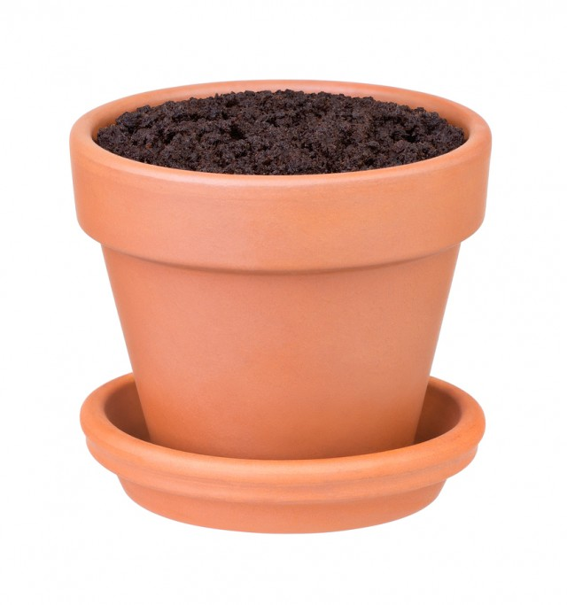 Flower pot with the soil on white background
